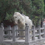 picture$luoyang_white_horse